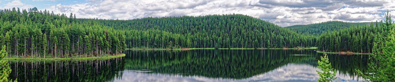 Un suberbe paysage naturel : une forêt se reflète dans à la surface du lac Sibley, photographiée lors d'un road trip dans l'Etat du Wyoming aux USA.