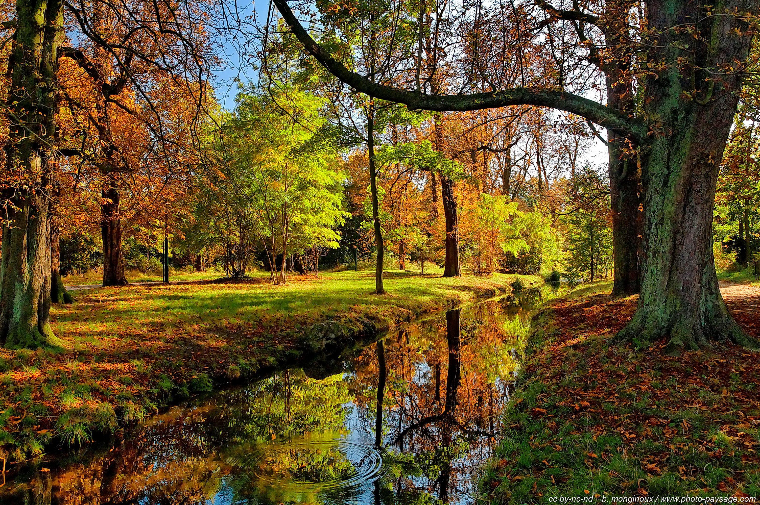 Les Plus Belles Photos De Nature Le Bois De Vincennes