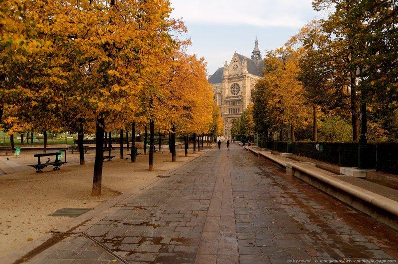 Photo du jour automne paris le blog de photo for Paris paysage