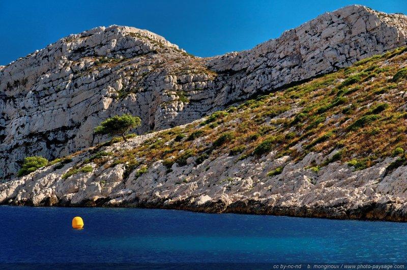 Marseille le blog de photo for Agence de paysage marseille