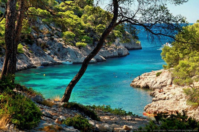 Une mer bleu turquoise calanque de port pin littoral for Agence de paysage marseille