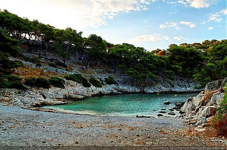 calanque-port-pin-02.jpg