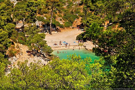 calanque-port-pin-03.jpg