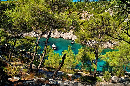 calanque-port-pin-04.jpg