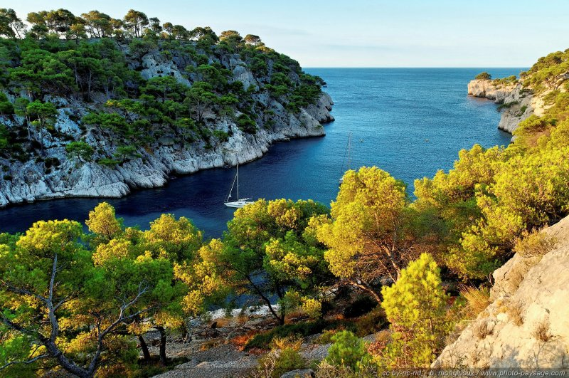 Calanque de Port Pin - [Pinède, garrigue et calanques]