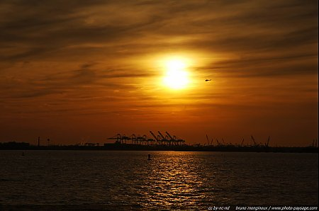 grues-port-new-jersey.jpg