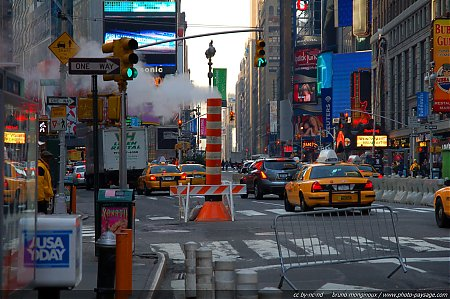 time-square-jungle-urbaine.jpg