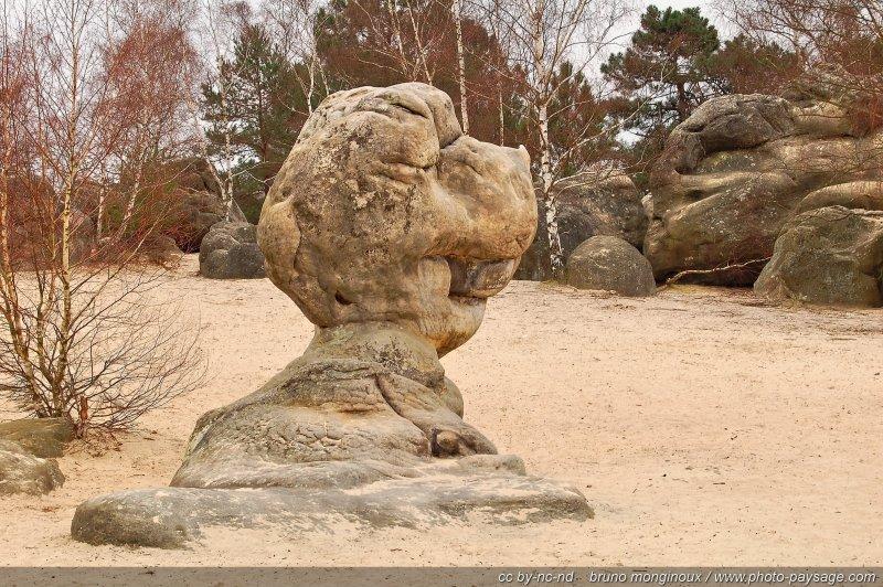 Le bilboquet - Désert aux sables du Cul de Chien, Forêt des Trois Pignons