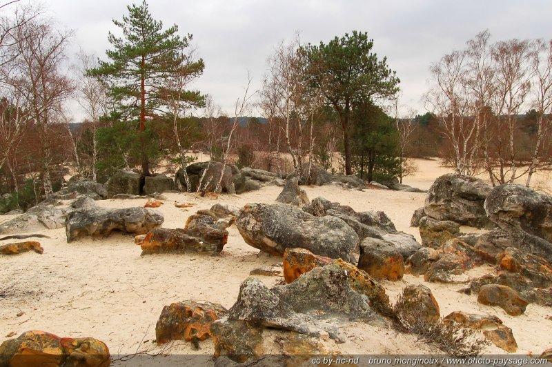 Roches grayeuses et sable fin - Désert aux sables du Cul de Chien, Forêt des Trois Pignons