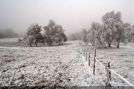 thumb_brume-hiver-neige-et-givre-2