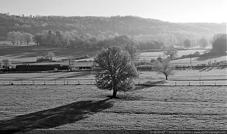 campagne-hiver-champs-givre-3.jpg