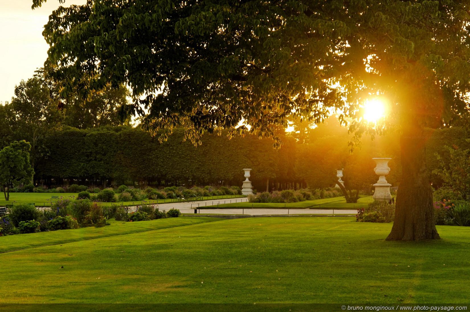 Cliquez ici pour afficher et t l charger le fond d 39 ecran - Soleil jardin ...