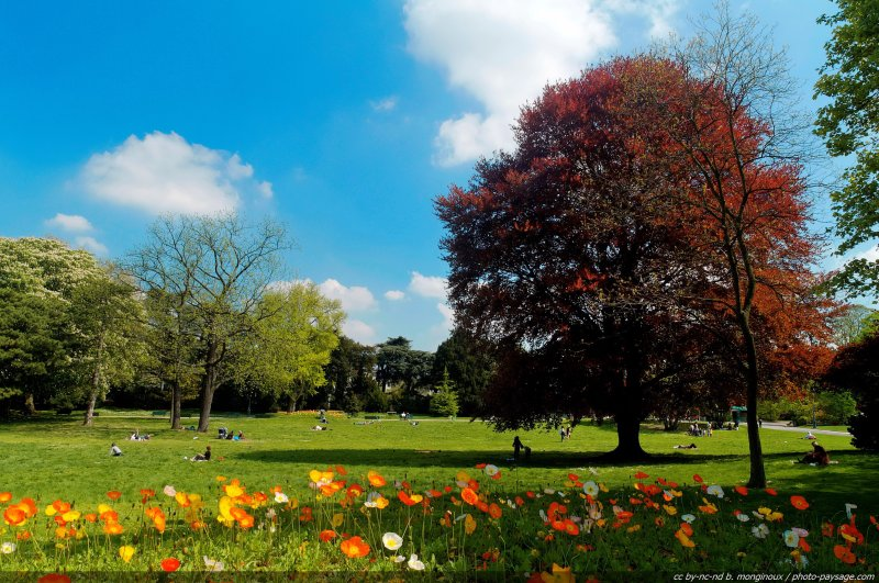 Parque en la montaña Normal_Le_printemps_au_parc_Montsouris-06