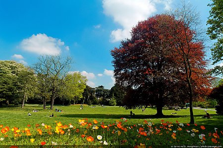 Le_printemps_au_parc_Montsouris-06.jpg