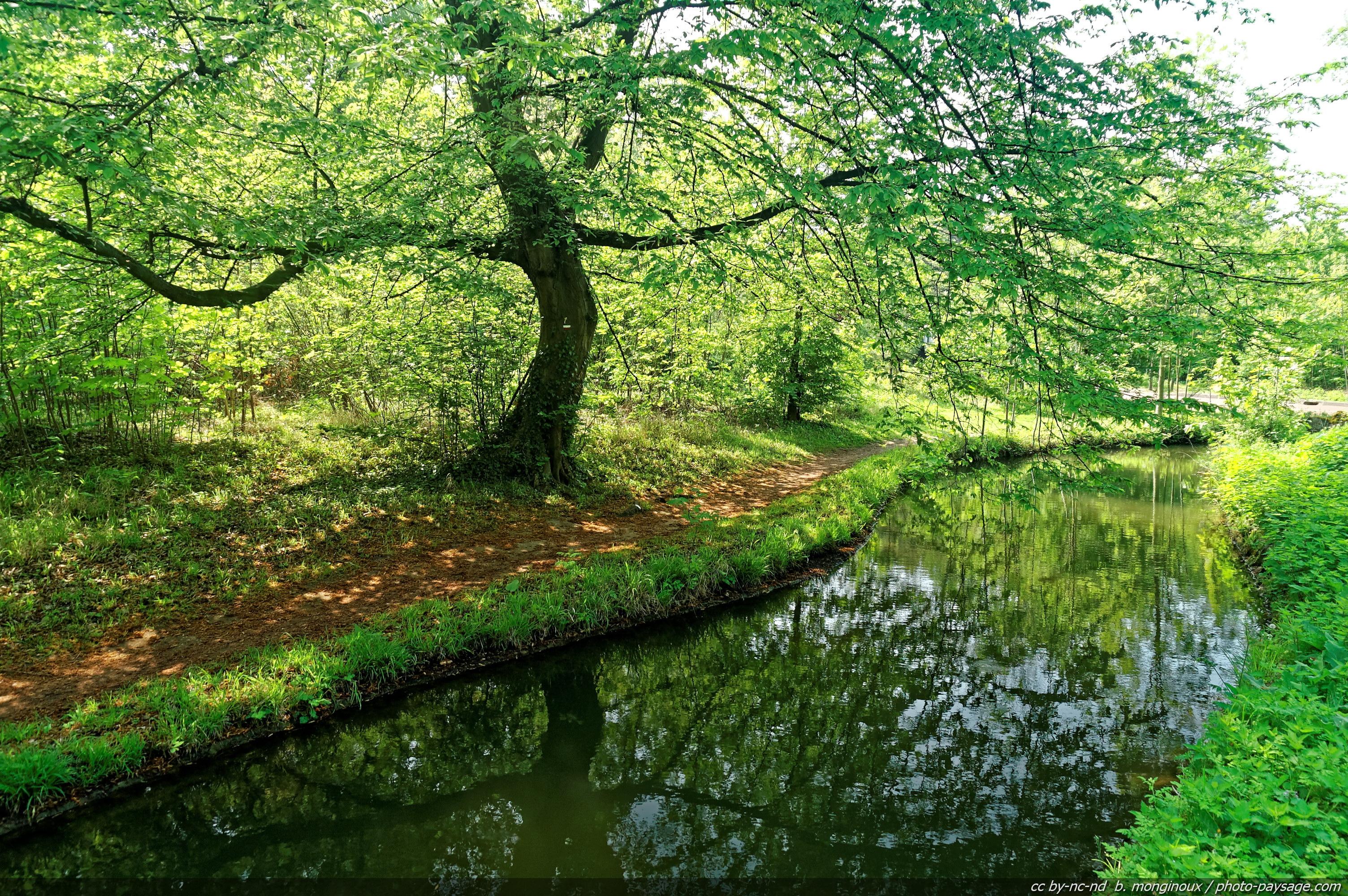 Image Bois De Boulogne : photos de paysages les for?ts bois de boulogne photo 13 24 annonces