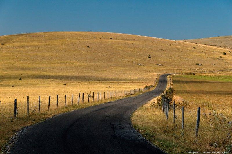 Une route au milieu des collines arides du Causse Mejean - Causse Méjean,  Cévennes (Lozère) France