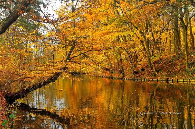 le lac des minimes en automne 33 bois de vincennes paris. Black Bedroom Furniture Sets. Home Design Ideas