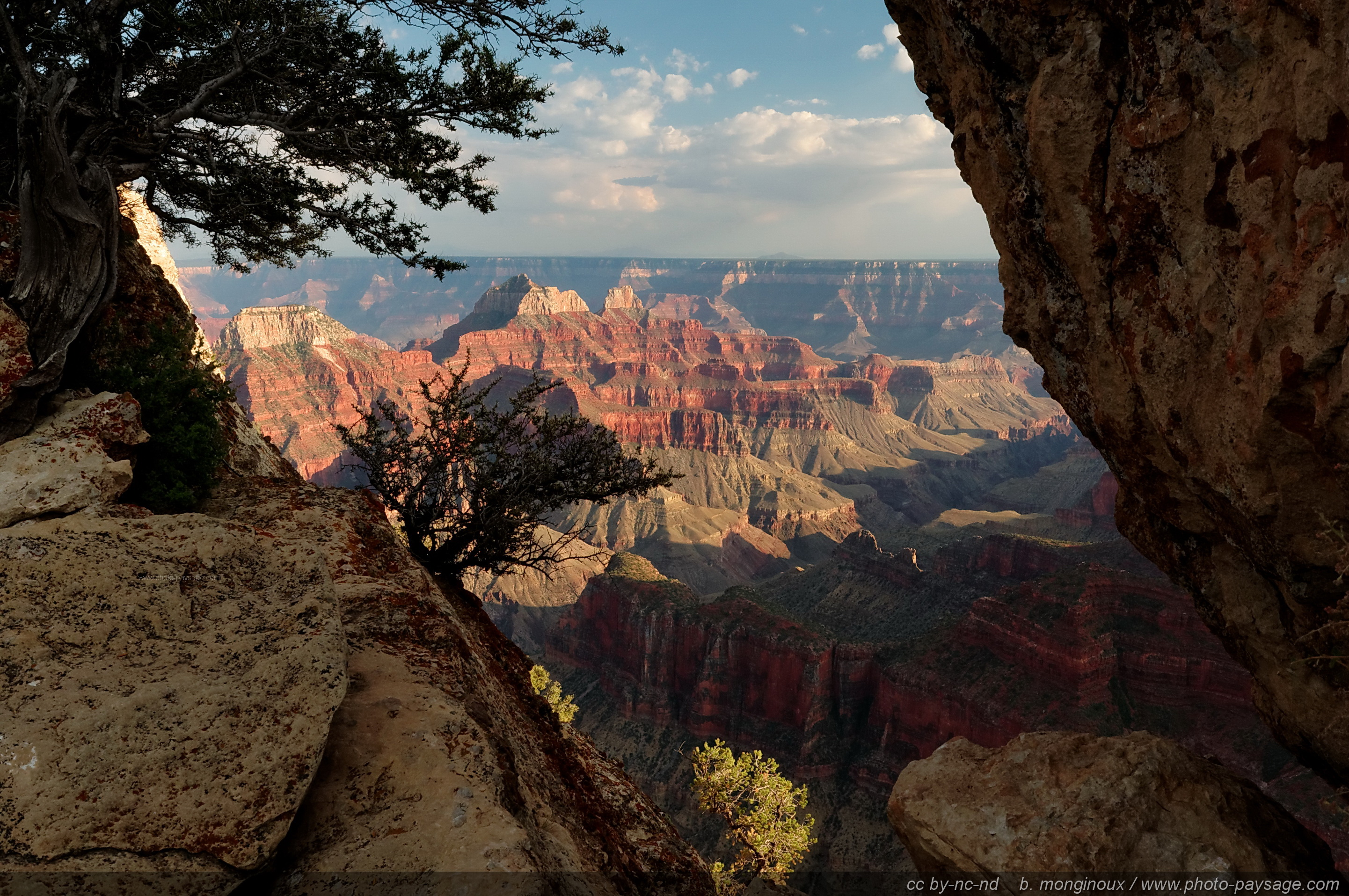 Vue plongeante sur le Grand Canyon (North Rim), Arizona, USA.