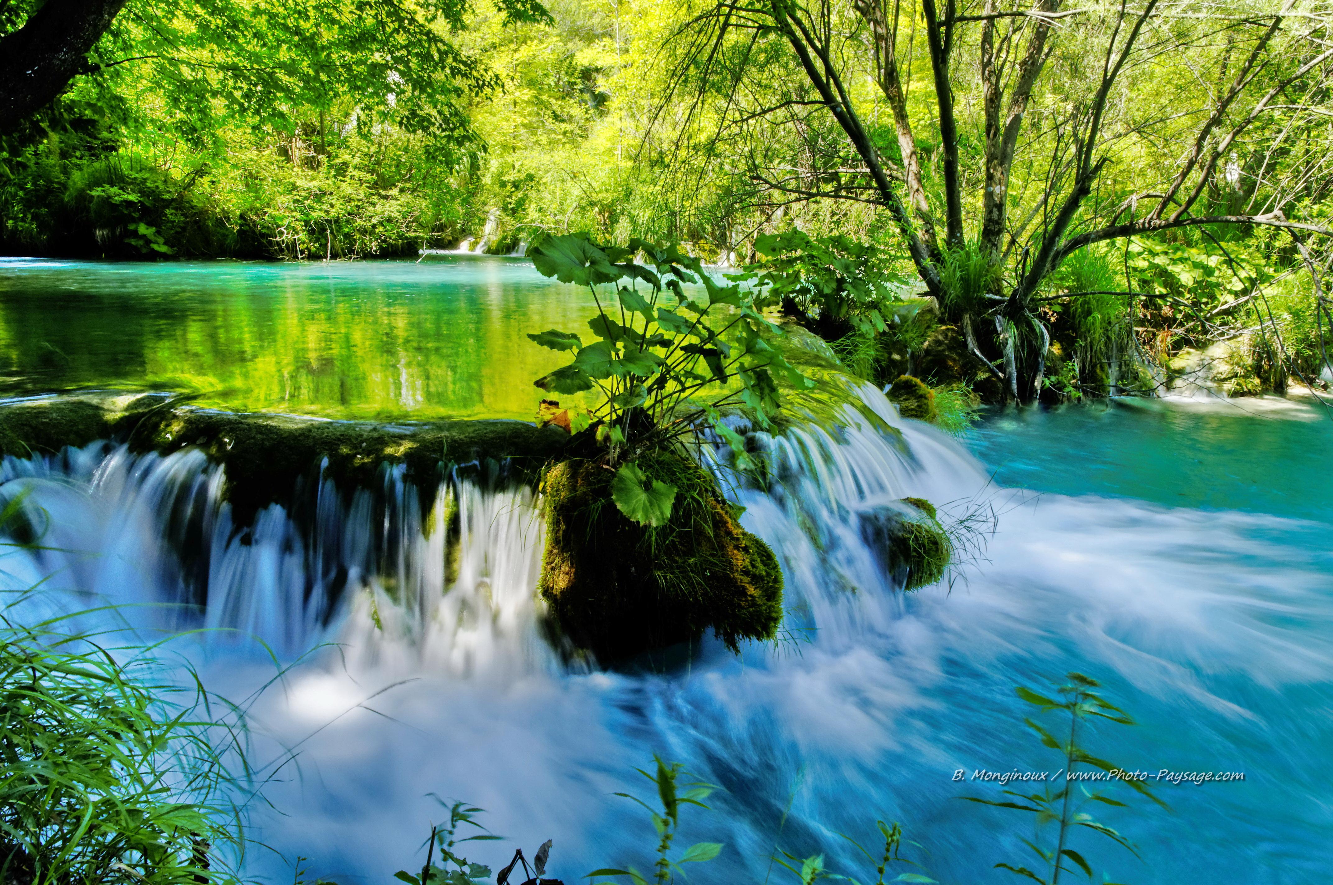 Belle Image De La Nature Hd