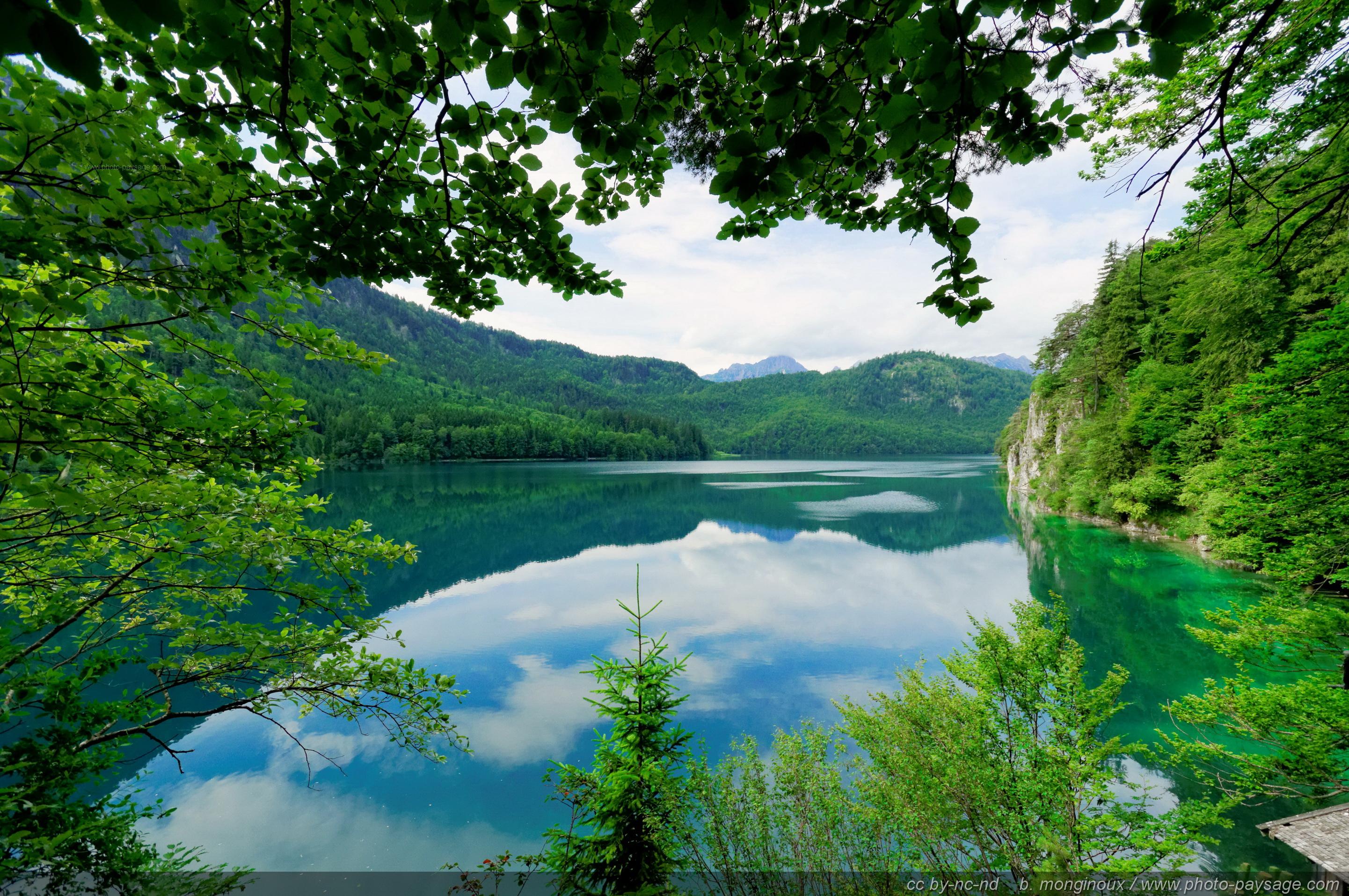 Les Alpes se reflètent à la surface du lac Alpsee bei Schwangau, Bavière, Allemagne