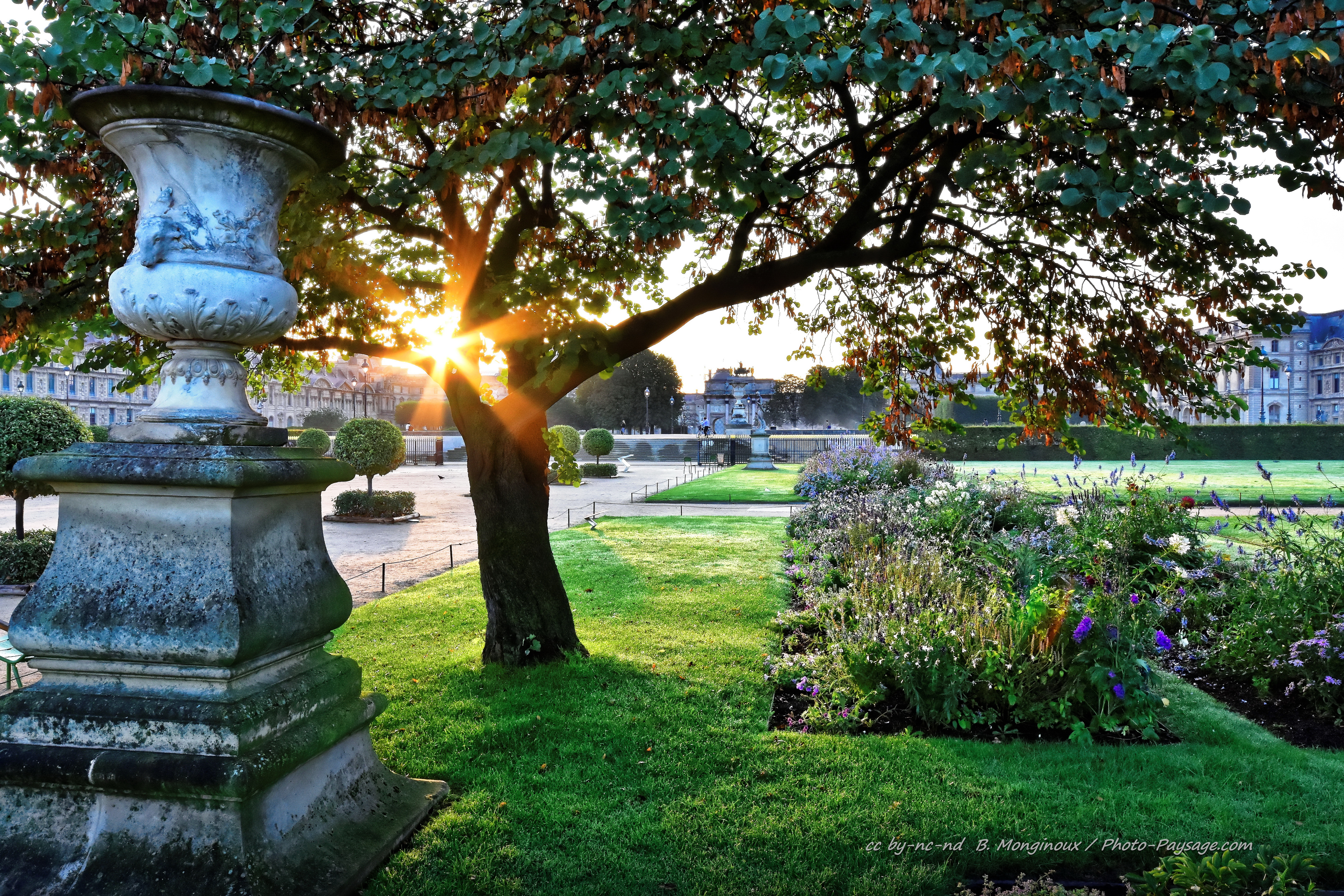 Lever de soleil dans le jardin des Tuileries | Photo-Paysage ...