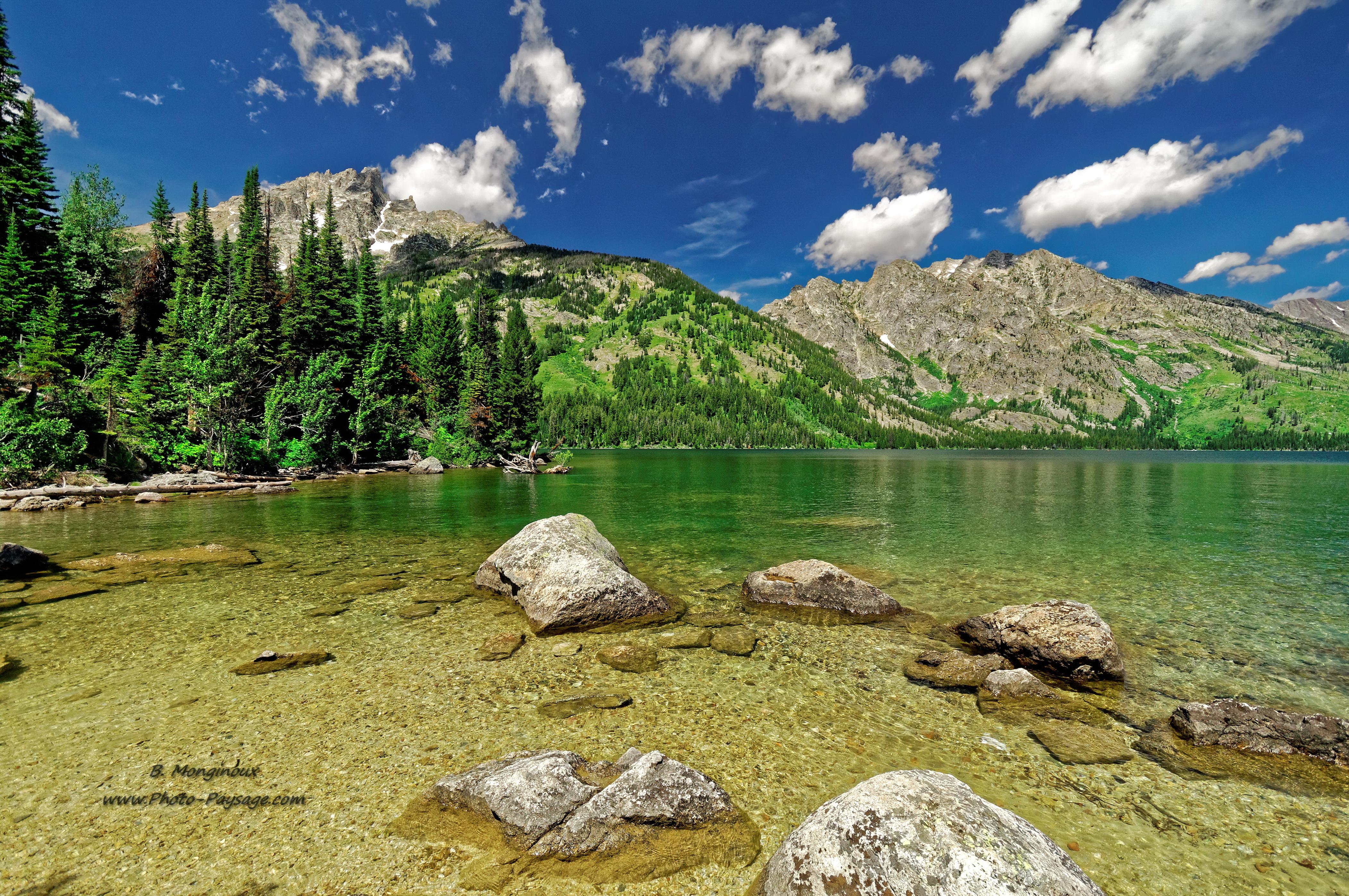 Nouvel Album Parc National De Grand Teton Wyoming Le