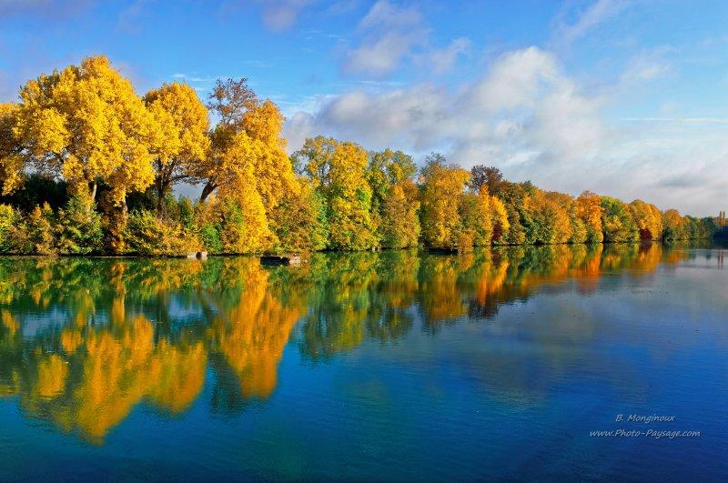 Arbres en automne align s au bord de l 39 eau automne en - Photo d automne gratuite ...