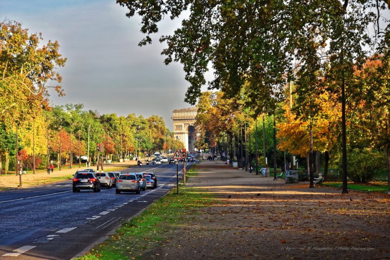 Automne à Paris - Avenue Foch, Paris, France