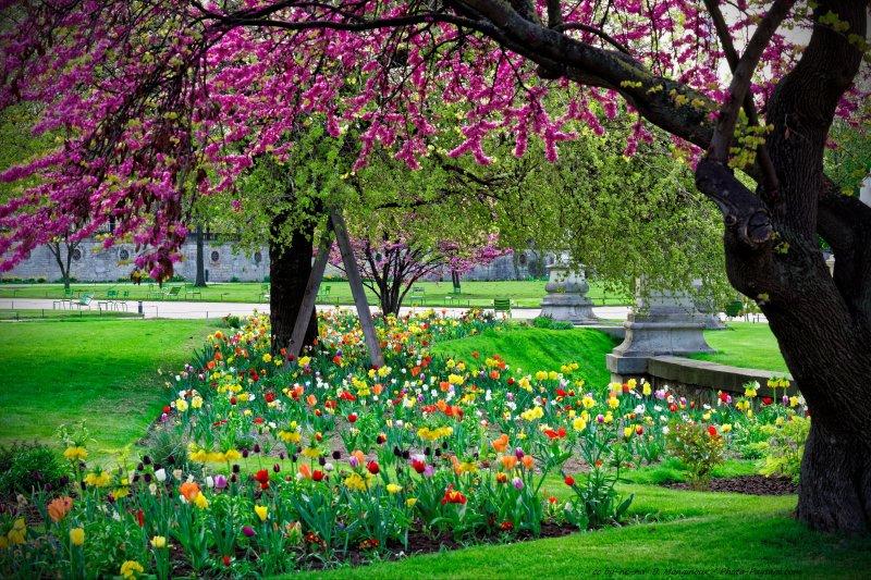 Photo le blog photos de paysages nature for Paysage jardin