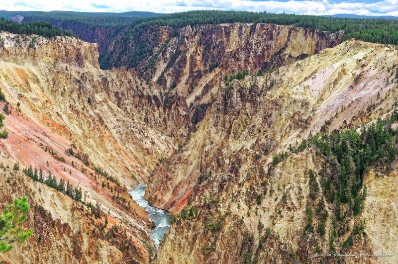 Ici les falaises prennent des teintes allant de l'orange au rose, tandis que la rivière Yellowstone serpente au fond du canyon.