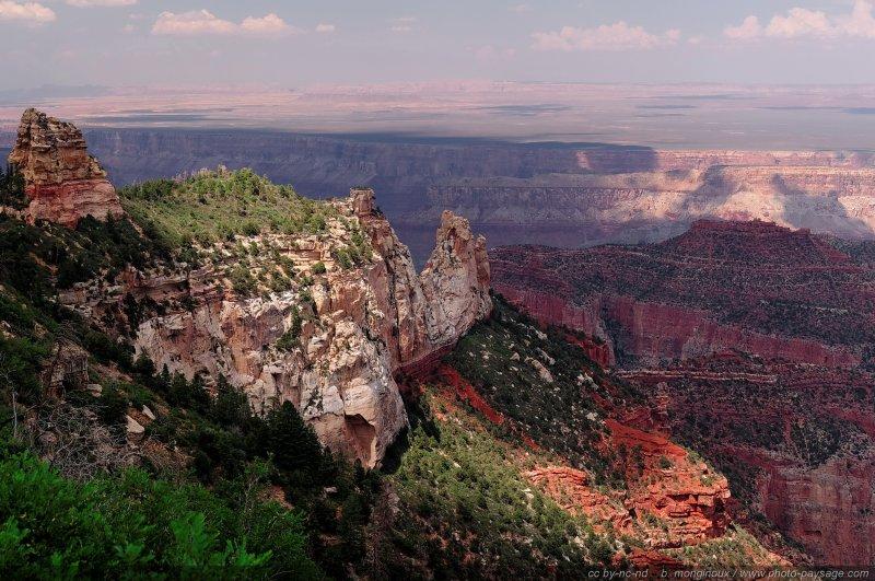 Des falaises recouvertes de végétation, photographiées depuis Roosevelt Point sur la rive nord du Grand Canyon. Arizona, USA