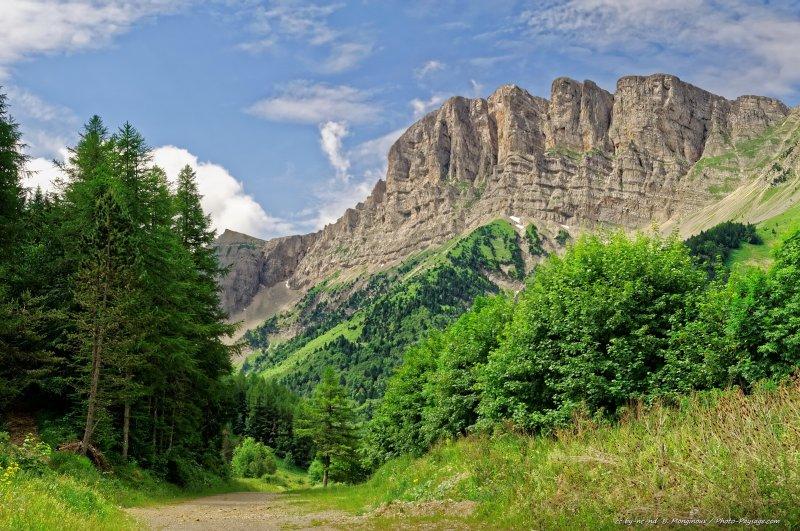 Les falaises du Grand Veymont (2341 m), photographiées depuis la forêt en contrebas au niveau de Gresse-en-Vercors (Isère).