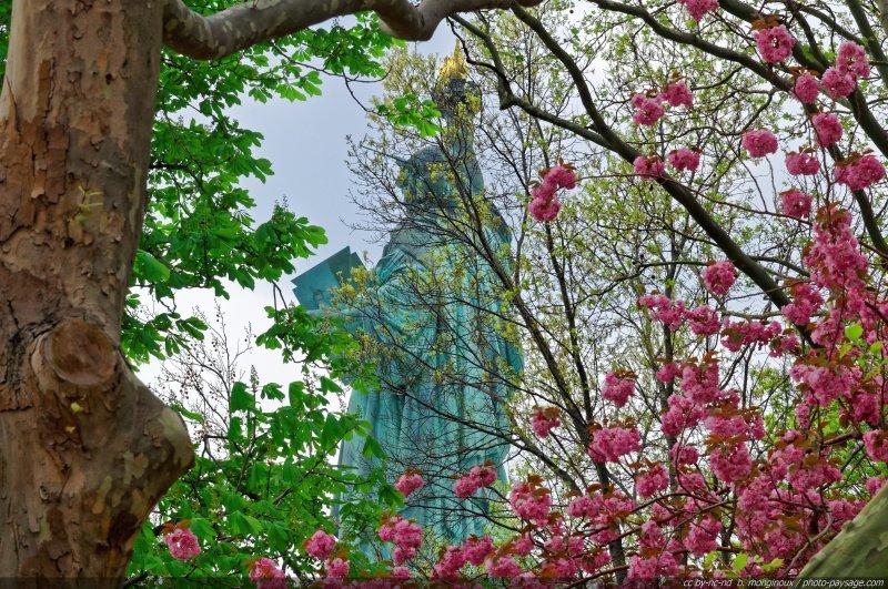 Des cerisiers en fleurs photographiés sur Liberty Island, dans la baie de New-York, juste derrière la Statue de la Liberté. C'est bien le printemps à New-York ;)