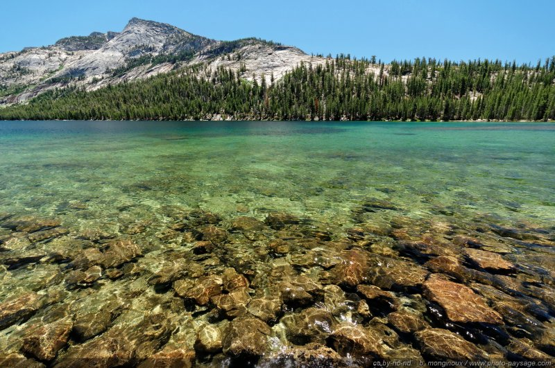 Les eaux translucides de Tenaya Lake - Yosemite National Park, Californie, USA