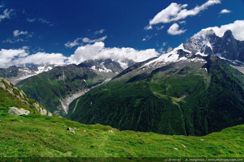 Panorama alpin : les Grands Montets vus depuis la réserve des Aiguilles Rouges