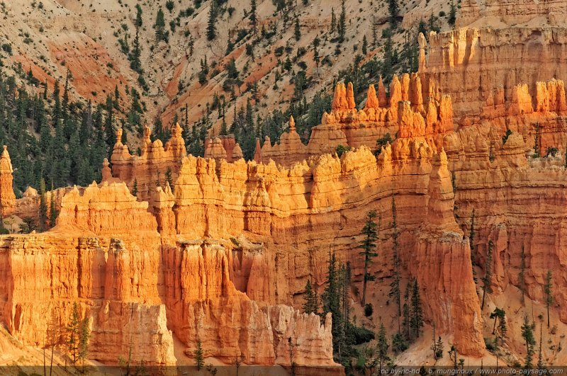 Les hoodoos de Sunset Point, parc national de Bryce Canyon, Utah, USA