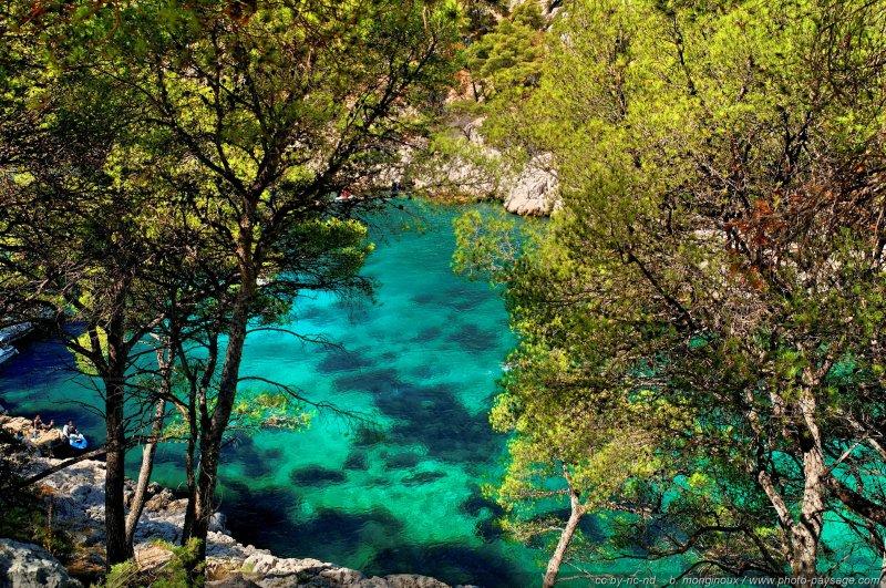 Paysage des calanques de cassis 2 littoral de provence for Agence de paysage marseille