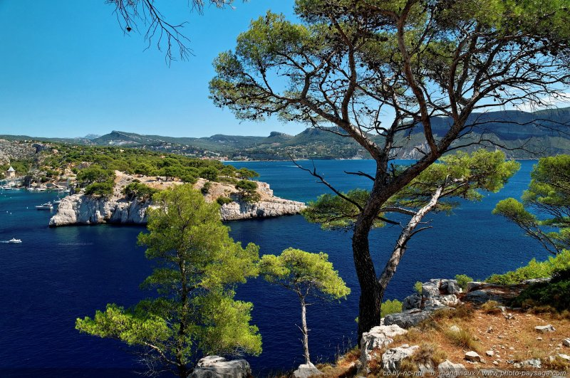 paysage des calanques de cassis 8 littoral de provence entre cassis et marseille le parc. Black Bedroom Furniture Sets. Home Design Ideas
