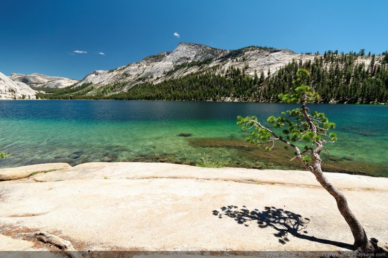 Tenaya lake - Yosemite National Park, Californie, USA