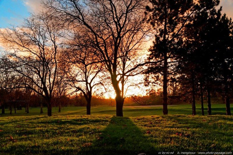 Ombres rasantes d 39 un soir d 39 automne dans un parc photo le blog - Palpitations le soir au coucher ...
