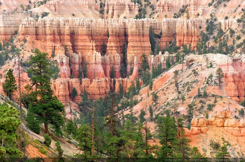 bryce canyon buddhist dating site C & e holidays offers various usa tour packages from singapore select the best itinerary that suits your travel needs enquire now.