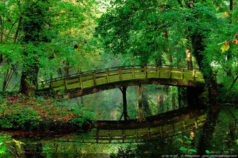 Un petit pont se reflète dans l'eau -