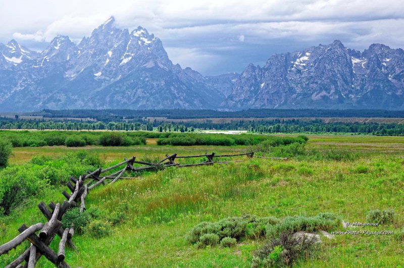 Une prairie dans le parc national de Grand Teton - Parc national de Grand Teton, Wyoming, USA