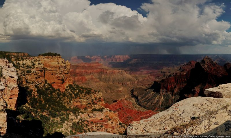 Vue panoramique d'une averse de pluie au-dessus du Grand Canyon - [i](assemblage panoramique HD)[/i]