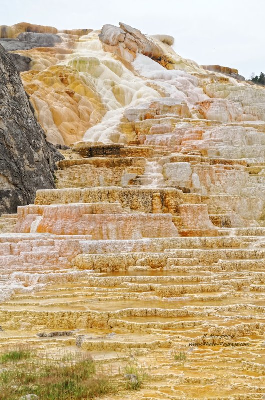 Mammoth hot springs - 2 - Parc national de Yellowstone, Wyoming, USA