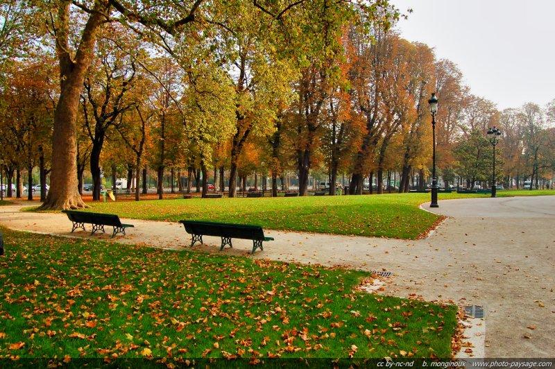 jardin public en automne paris france