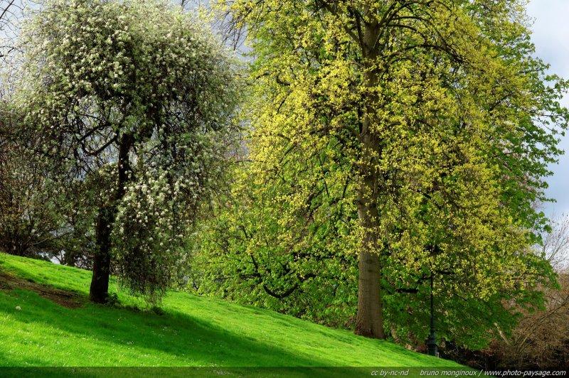 Photo du jour le printemps en ville photo for Ville nature
