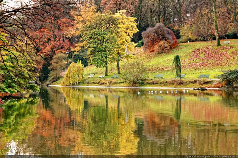 reflets d 39 automne au parc montsouris paris france. Black Bedroom Furniture Sets. Home Design Ideas