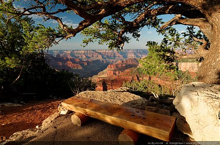 Assis sur un banc au bord du Grand Canyon