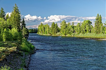 Au bord de la Snake River